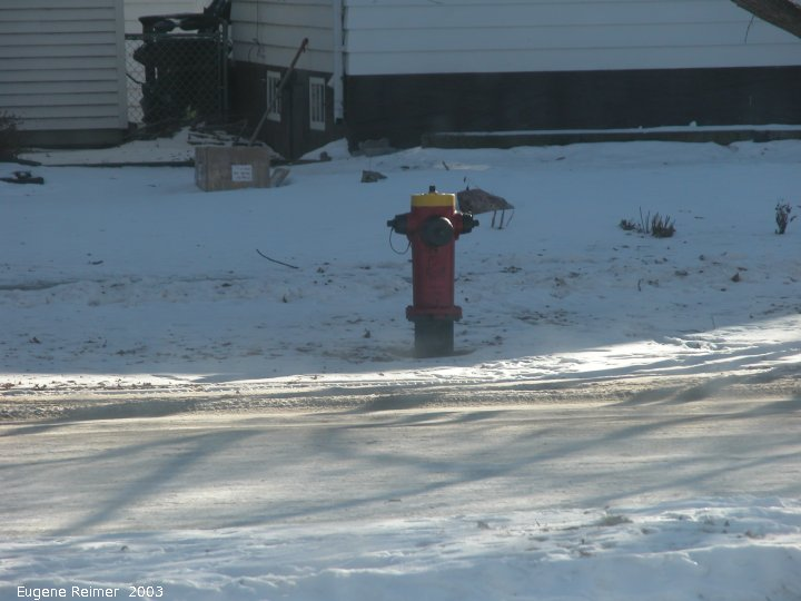 IMG 2003-Jan09 at experiments with my new Nikon 5700 camera:  testing firehydrant optical-zoom