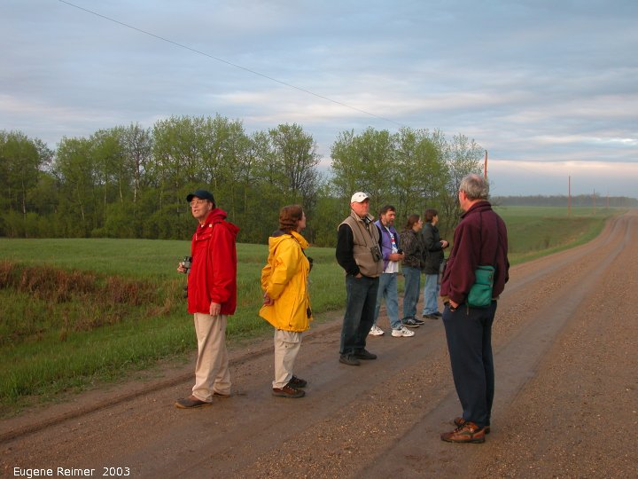 IMG 2003-May16 at WalkinshawPlace near Boissevain:  birders on road