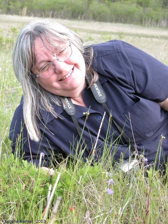 IMG 2003-Jun11 at Anola:  cbc-hunt Doris+Blue-eyed grass (Sisyrinchium montanum)