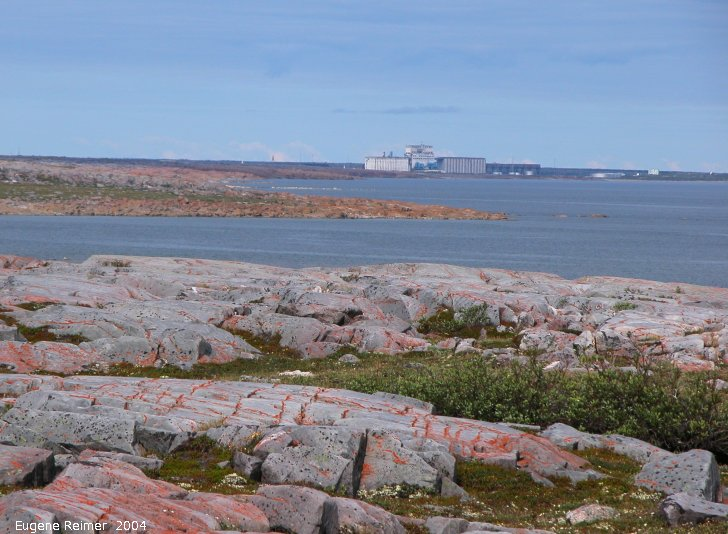 IMG 2004-Jul19 at CoastRd:  grain-terminal in the distance