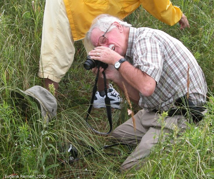IMG 2005-Jul21 at MossSpurRd:  Bob Ferry zooms in on Ragged fringed-orchid (Platanthera lacera)