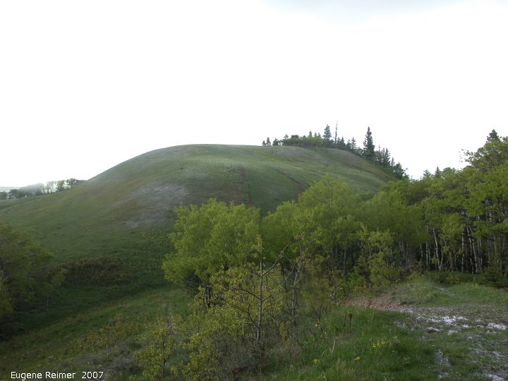 IMG 2007-May23 at CypressHills-CentreBlock:  Bald butte highest point in centre-block