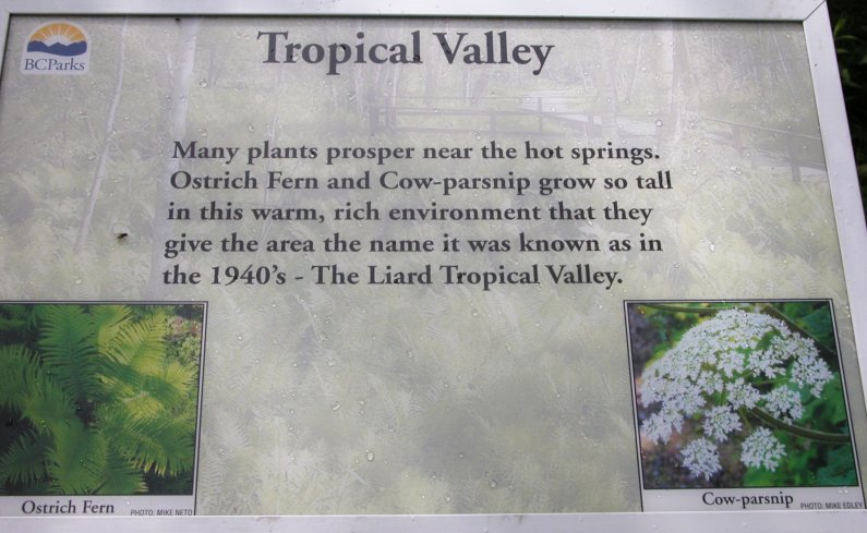 IMG 2008-Jul11 at Liard Hotsprings-BC:  sign about the Tropical Valley